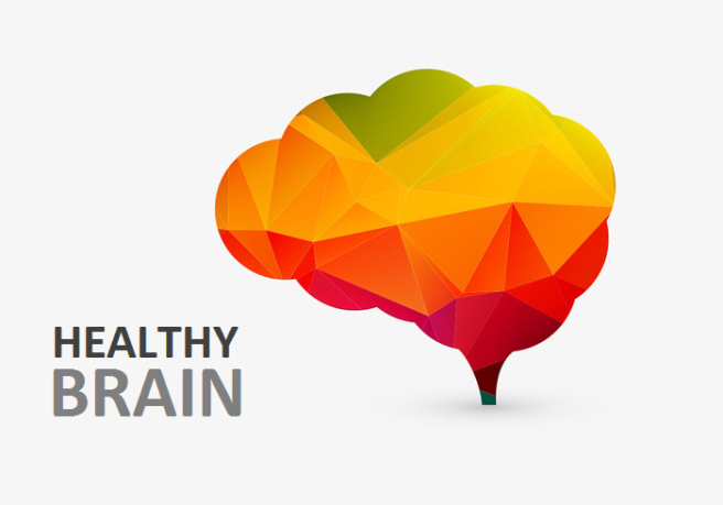 vector-colorful-creative-brain.png